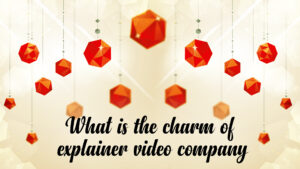 What is the charm of explainer video company